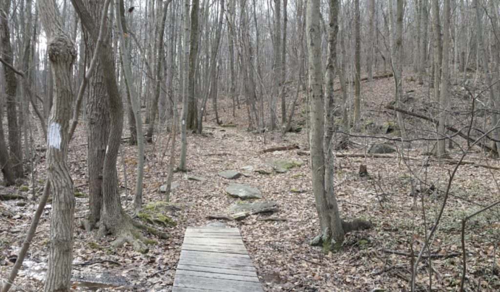 Appalachian Trail, OutdoorZ.Life