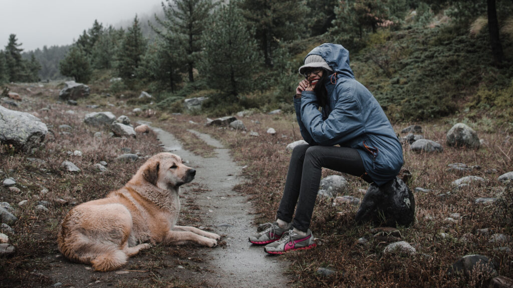 Ideas for hiking with dogs