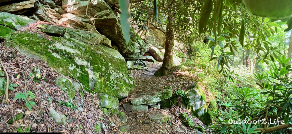 Rocks and Rhododendrons